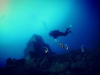 大瀬崎湾内新漁礁